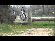 """1.  Example of some uncomplicated XC jumps.  """"Dale's first time cross country jumping"""""""