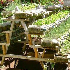 Wonderful Useful Ideas: Vegetable Garden Drawing Etsy vegetable garden drawing raised beds.Patio Vegetable Garden Design vegetable garden planters self watering.When To Plant Vegetable Garden Roots. Reuse Plastic Bottles, Recycled Bottles, Plastic Jugs, Recycled Tires, Recycled Crafts, Gardening For Beginners, Gardening Tips, Gemüseanbau In Kübeln, Recycling Containers