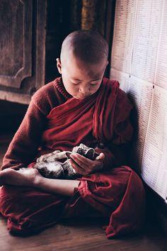 Jeune moine et chat, Birmanie, par Frank Ryckewaert