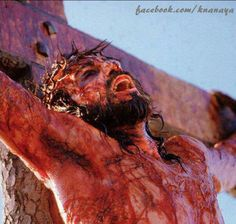 Jesus Crucified - images of christ on the cross Images Du Christ, Pictures Of Christ, Religious Pictures, God Jesus, Christ Movie, Image Jesus, Spiritual Formation, Saint Esprit, Jesus Quotes