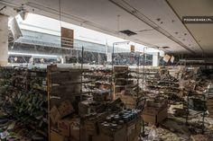 Shocking Aftermath: Nature Reclaims Post-Disaster Fukushima   Urbanist