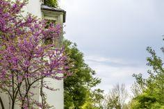 Schlosshotel Wartegg - grüne Oase am Bodensee - Reisetipp