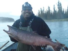 The Alaska King Salmon is the official state fish and ultimate prize for any fisherman looking for the excitement of landing a big one. King Salmon in the Fishing Tips, Bass Fishing, Alaska Salmon Fishing, Fishing In Canada, Best Knots, King Salmon, Fishing Adventure, Types Of Fish, Fishing Techniques