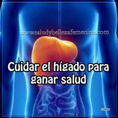 Cuidar el hígado para ganar salud