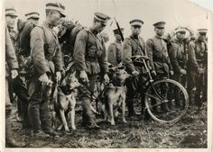 1936- Japanese soldiers and war dogs during annual army maneuvers held at Hokkaido.