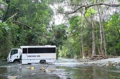 2-Day Cooktown 4WD Small-Group Tour from Cairns or Port Douglas Discover Australia's Aboriginal culture and explore the rugged beauty of the Lower Cape on this 2-day Cooktown small-group tour from Cairns or Port Douglas. You'll drive through the World Heritage Listed Daintree National Park and the famous Bloomfield Track by 4WD, enjoy a free day to explore Cooktown and travel through the Palmer River gold mine region. The tour includes overnight accommodation in Cooktown, Aust...