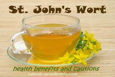 St. John's Wort - Health Benefits, Side Effects & Cautions