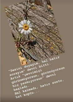 Dandelion, Islam, Cool Designs, Words, Quotes, Instagram, Dua, Random Thoughts, Quote