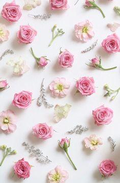 "princesspastelrose: ""Flowers - getty images """