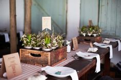 natural tablescape using crates
