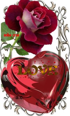Love Heart Gif, Love You Gif, Cute Love Gif, I Love You Pictures, Beautiful Love Pictures, Beautiful Gif, Love Rose Flower, Beautiful Rose Flowers, Love Heart Images