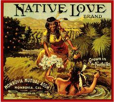 Monrovia Native Love Orange Citrus Fruit Crate Box Label