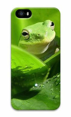 Green frog 3D Case popular iphone 5S covers for Apple iPhone 5/5S Case for iphone 5S/iphone 5,http://www.amazon.com/dp/B00KF262SC/ref=cm_sw_r_pi_dp_wKWGtb0B17MXYAJZ