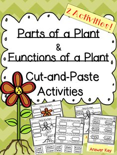 Students match labels to pictures of the different parts of a plant and the different functions of a plant on two different cut and paste activities! Reinforce and assess their learning by using these fun cut-and-paste activities! $ #Plant #Plants #PartsofaPlant #elementary #Science #Functions