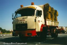 Rc Trucks, Vehicles, Ideas, Dump Trailers, Bern, Truck, Rolling Stock, Thoughts, Vehicle