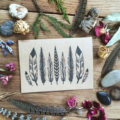 Hey, I found this really awesome Etsy listing at http://www.etsy.com/listing/167400185/feathers-blank-cards-kraft-set-of-6
