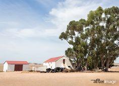"""Die Platteland"" Canvas Print, scenes from the Swartland region in South Africa.⠀    .⠀ #wallartdecor #wallartforsale #walldecoration #interiorprints #interiorposter #canvasart #canvasartprint  #decorsouthafrica #wallartsouthafrica #homedecorsa⠀   #thisissouthafrica⠀ #proudlysouthafrican⠀ #southafricanart⠀ #capetownart⠀ #southafricatourism⠀ #travelsouthafrica⠀ #landscapesouthafrica⠀ #ilovesouthafrica⠀  #countryphotography⠀ #platteland⠀ #afterimagecanvas⠀ #transformyourspace⠀"