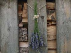How to Grow and Harvest Lavender, good read out today from growveg.com