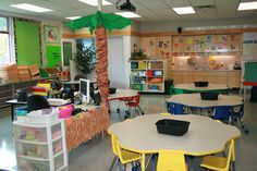 my tables and teaching station....love the palm tree covering my ugly document camera pole