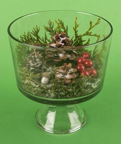 Trifle Bowl Terrarium | Decorating for the holidays doesn't have to be stressful. Deck the halls with these effortless (yet impressive) Christmas crafts.