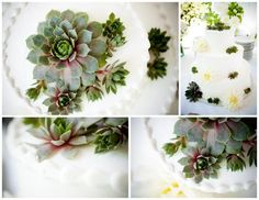 Simple buttercream cakes are elevated with the addition of succulents.  Try adding a yellow satin ribbon around the base of each layer if it seems like too much white.