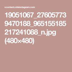 19051067_276057739470188_965155185217241088_n.jpg (480×480)
