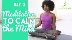 Meditation to Calm The Mind - Day 3 - 30 Day Meditation Challenge