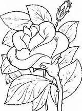 Descargar e imprimir dibujos de flores para pintar y colorear en el ...