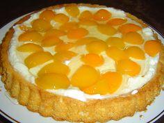 Ovocné řezy jsou jemné cukrářské moučníky. Nepřipravujeme je jako hlavní jídlo, ale jako malý zákusek ke kávě, čaji nebo ke sladkému