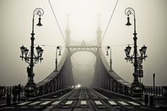 This just happens to be my favorite bridge in Budapest! The Liberty bridge over the Danube, Budapest, Hungary Mundo Design, Liberty Bridge, Foto Poster, Foto Art, Architecture Old, Beautiful Architecture, Beautiful Landscapes, Landscape Photos, Oh The Places You'll Go