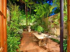 Totally in love with this tropical garden