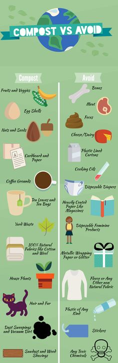 Not sure what you can and can't compost? Check out my handy info-graphic to see!