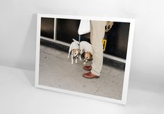 PRINT & BOOK: Brighton Picture Hunt, 2010 by Carmen & Alec Soth Martin Parr, Limited Edition Prints, Photo Book, Brighton, Books, Pictures, Photos, Libros, Book