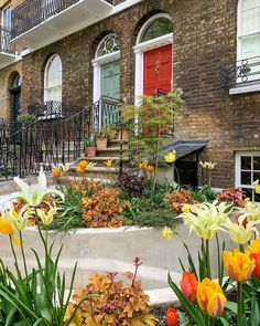 """A Lady in London on Instagram: """"Happy Tuesday! I love how this spring garden's color scheme looks autumnal 🍁"""" Front Garden Landscape, Garden S, Spring Garden, Garden Landscaping, Garden Ideas, Secret Places In London, London Places, Cheapest Places To Live, Best Places To Live"""