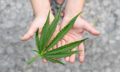 How To Plan A Weed Wedding • Green Rush Daily