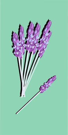 lavender05 by @yamachem, lavender with shadow, on @openclipart