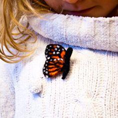 Butterfly brooch Needle felted butterfly Butterfly by CraftsByKeri