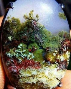 Beautiful moss agate from Indonesia | #Geology #GeologyPage #Agate #Mineral Geology Page www.geologypage.com