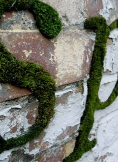 moss lettering - a couple of handfuls of moss, 12 oz of buttermilk or a can of beer and a tbsp of sugar.  Paint on wall and spray with water daily as it grows.
