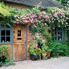 Montana Alba Clematis and Zephrine Drouphin Roses clamber and frame the Door and Windowframe beautifully