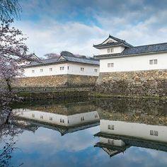 【a_sekido】さんのInstagramをピンしています。 《Shiga Pref.Hikone Castle  #写真好きな人と繋がりたい  #写真撮ってる人と繋がりたい  #写真 #写真家  #写真撮る人と繋がりたい  #写真ライフ #写真が好きな人と繋がりたい  #写真は心のシャッター  #波止場写真部  #風景写真  #写真を撮るのが好き  #城 #城郭 #滋賀県 #彦根城#彦根 #photo  #photographer #japan #tokyocameraclub #camera #pentax #castle #春 #桜 #青空 #art  #artist》