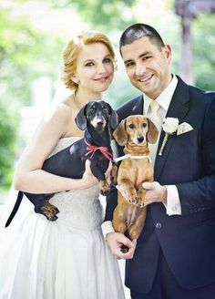Abbey will definitely be a guest for sure…and who ever our little boy doxie at the time will be too