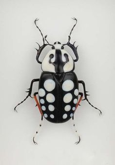 Miscellaneous Beetles - White Dotted Beetle by Emanuel Toffolo / Glass / ガラス工芸 Beetle Insect, Beetle Bug, Insect Art, Bug Insect, Cool Insects, Bugs And Insects, Beautiful Creatures, Animals Beautiful, Cute Animals