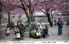 明治9年開園の横浜公園。
