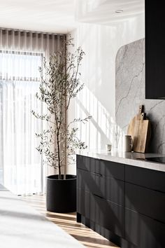 styling a large kitchen with an olive tree in a pot. Cabinet doors Polytec Woodmatt Kitchen Room Design, Best Kitchen Designs, Kitchen Interior, Black Kitchens, Cool Kitchens, Custom Home Builders, Custom Homes, Co Design, House Design