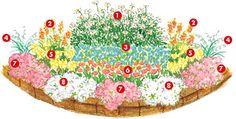 メインガーデンの花壇のイメージイラスト
