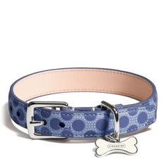 Coach Leather Dog Collars