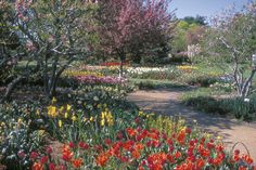 Heckman Bulb Garden - Missouri Botanical Garden, St Louis