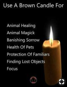 When I saw this I suddenly got a strong scent of brown sugar Wiccan Witch, Magick Spells, Candle Spells, Candle Magic, Brown Candles, Animal Reiki, Witchcraft For Beginners, Eclectic Witch, Witch Spell