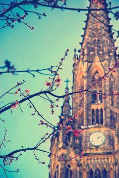 Catedral del Buen Pastor #Donostia #SanSebastian #Spain http://www.spiabroad.com/spain